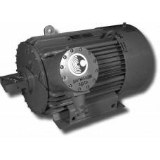 Электродвигатель  1ВАО-450S-2 У2,5   200 кВт, 3000 об/мин