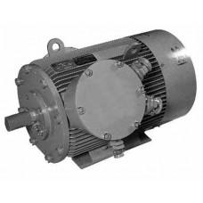 Электродвигатель 1ВАОЧР-315SК-0,38-6У2,5 110 кВт, 1000 об/мин