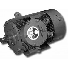 Электродвигатель  1ВАОРВ-280L-2У2,5   200 кВт, 3000 об/мин