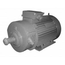 Электродвигатель 4МТН280S-10У1 45 кВт, 600 об/мин